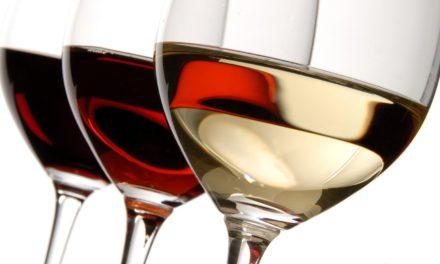 校友盛宴 味蕾之旅- 记中南大学香港校友深圳葡萄酒文化之旅